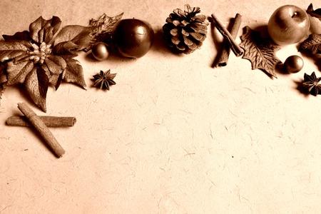 poinsettia and spice.sepia Stock Photo - 10416502