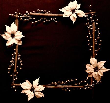 poinsettia and pearl. frame.sepia Stock Photo - 10416536