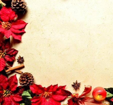 red poinsettia christmas frame