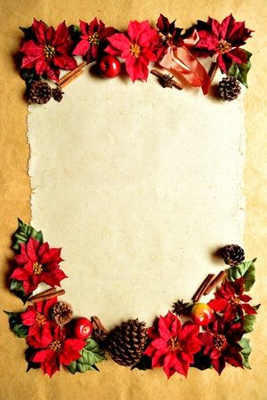 red poinsettia christmas frame