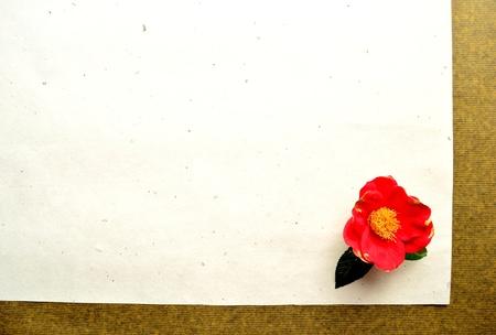 camellia: camelia rossa sulla carta giapponese Archivio Fotografico