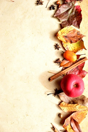 Red apple and autumn leaves