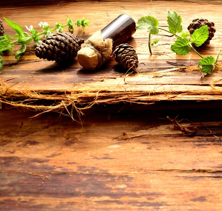 Herbs and aromatherapy photo