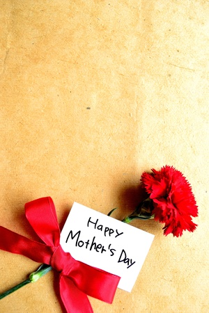 karanfil: Red carnation with  Mother s day  message card