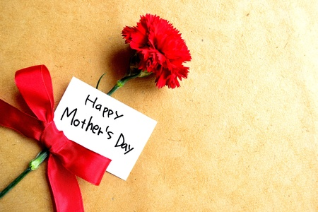 Red carnation with  Mother s day  message card