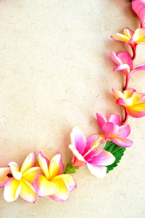 Pink plumeria lei Stock Photo - 14419146