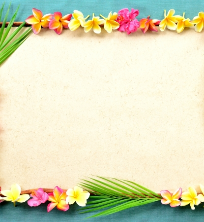 Frame of colorful plumeria with coconut leaf