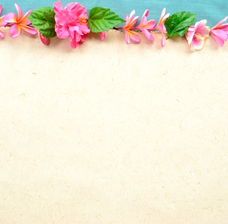 Frame of pink hibiscus and plumeria Stock Photo