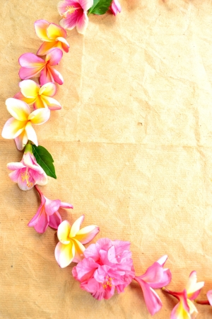 Wreath of pink plumeria with hibiscus photo