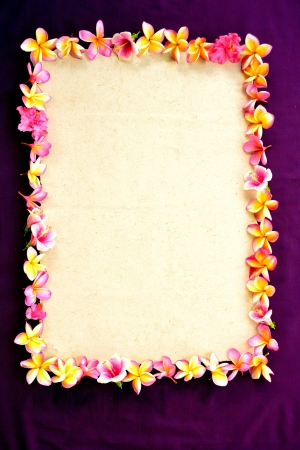 Frame of tropical Asian flowers on purple  photo