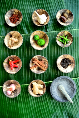 Spice with Indonesian millstone photo