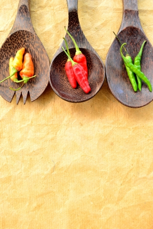 3colors chili peppers on wood spoons photo