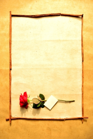 Frame of red rose with message card Stock Photo - 16850812