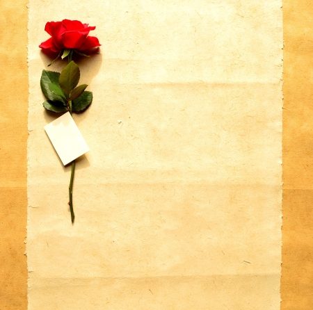 Red rose with message card on craft paper Stock Photo - 16850809