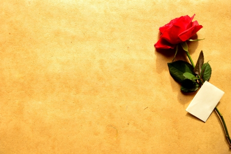 craft paper: Red rose with message card on craft paper