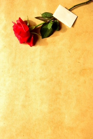 Red rose with message card on craft paper Stock Photo - 16850819
