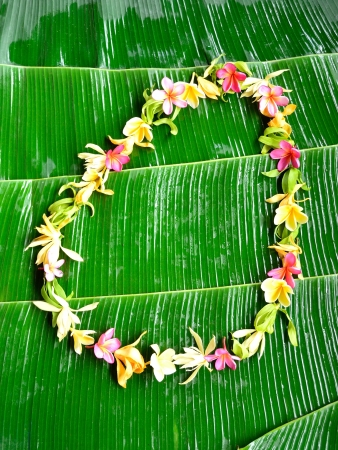 Lei of tropical flowers on banana leaf photo