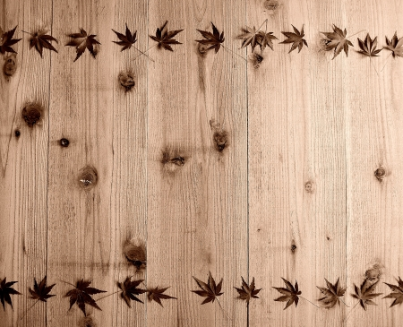 b and w:  Japanese maple leaves on wood background B W