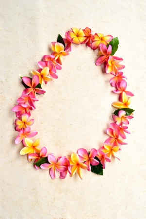 Lei of pink plumeria photo