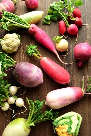 root vegetables: Colorful ortaggi a radice primavera