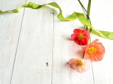 pastel colours: Colores pastel amapolas con cinta