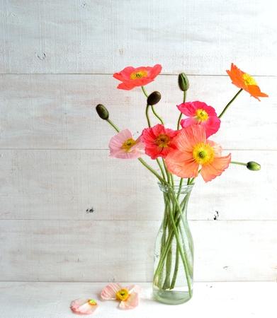 Kleurrijke poppies