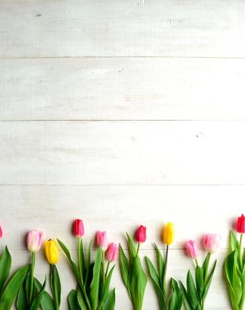 白い木製の背景に色とりどりのチューリップ