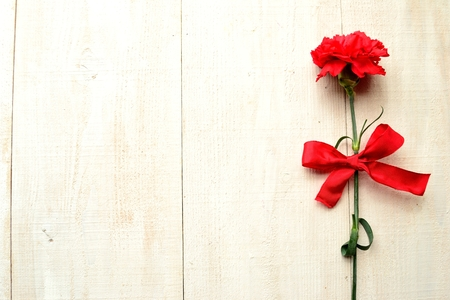 clavel: Clavel rojo con la cinta