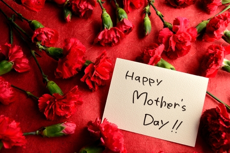Mothers day message card on red carnations background photo