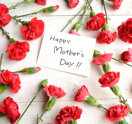Mothers day message card on carnations background