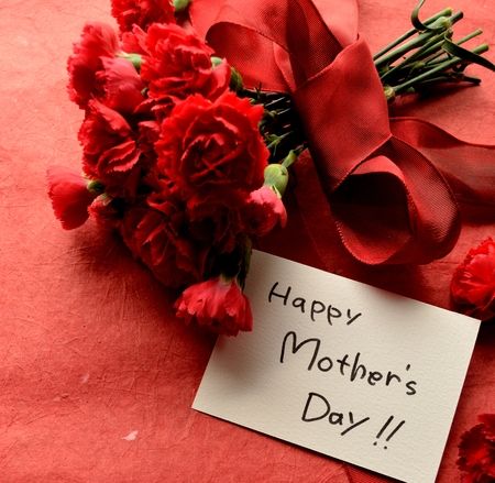 Mothers day message card with red carnations bouquet