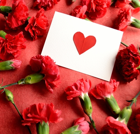 Heart message card on red carnations background photo