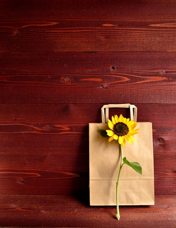 craft paper: Craft paper bag with sun flower Stock Photo