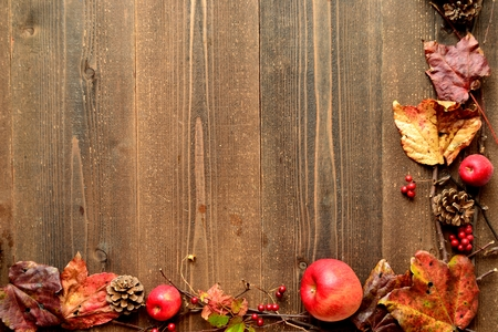 Red apples and autumn ivy leaves photo