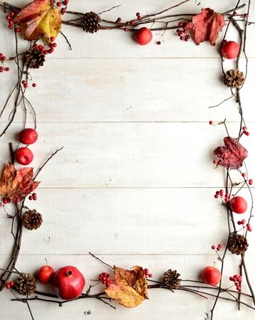 Red apples,pine cones and autumn ivy leaves photo