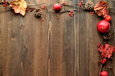 Autumn ivy leaf,apple and pine cone photo