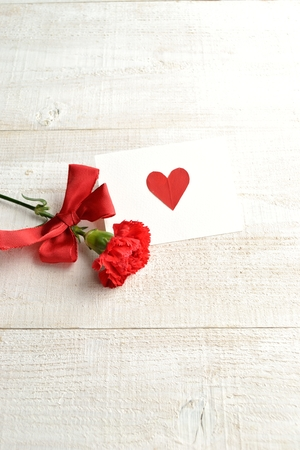 red  carnation: Single red carnation with message card