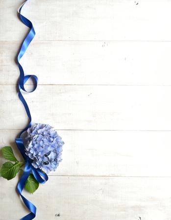 Blue hydrangea with ribbon