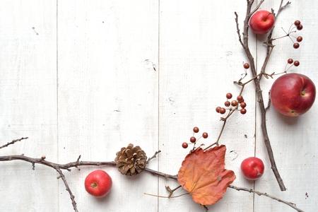 pomme de pin: Apple,pine cone and autumn leaf Banque d'images