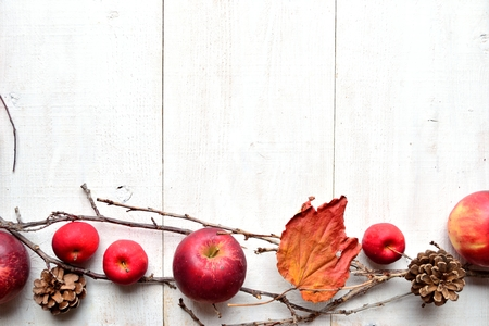 autumn food: Red apples, pine cones and autumn leaves on white wooden background Stock Photo