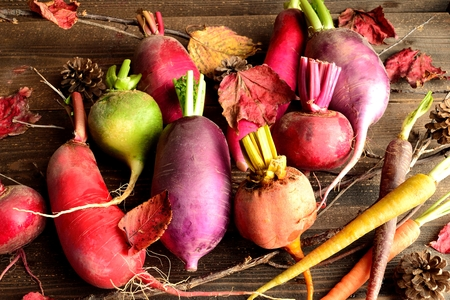 Colorful root vegetables with red fallen leaves
