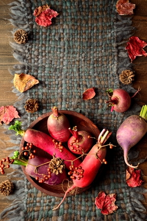 tejido de lana: verduras de colores raíces con hojas caídas en tejido de lana gris Foto de archivo