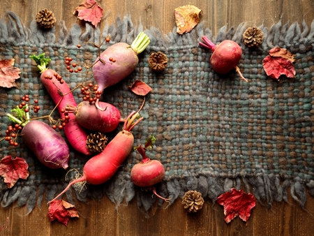 woolen fabric: verduras de colores ra�ces con hojas ca�das en tejido de lana gris Foto de archivo