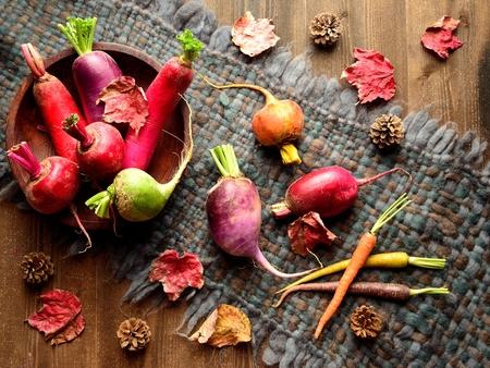 tejido de lana: verduras de colores raíces con hojas caídas en el tejido de lana gris