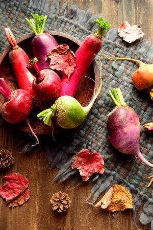 woolen fabric: verduras de colores ra�ces con hojas ca�das en el tejido de lana gris