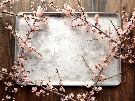 silver tray: Pale pink ume Japanese apricot blossoms on the silver tray