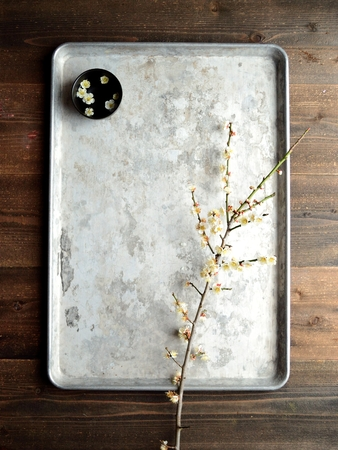 silver tray: White ume Japanese apricot blossoms, black small bowl on the silver tray Stock Photo