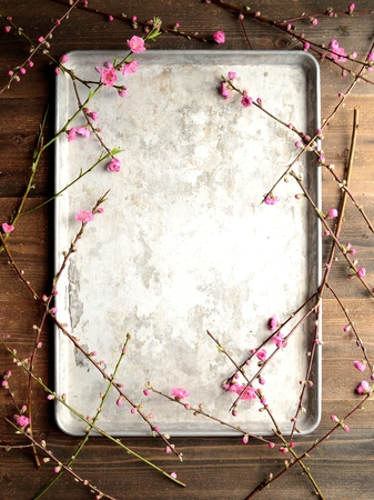 silver tray: Peach blossoms on the silver tray Stock Photo