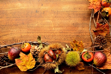 Chestnuts in burrs, persimmons, figs and fall leaves