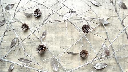 Silver pine cones, fallen leaves and white dead branch.frame Reklamní fotografie